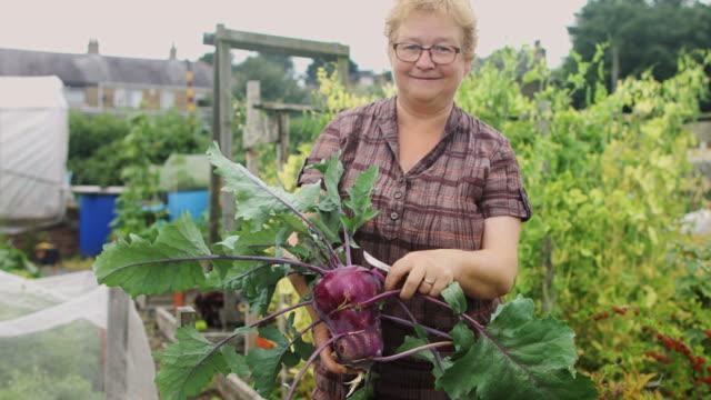 gärtner, posiert mit frisch gepflückten kohlrabi - hobby stock-videos und b-roll-filmmaterial