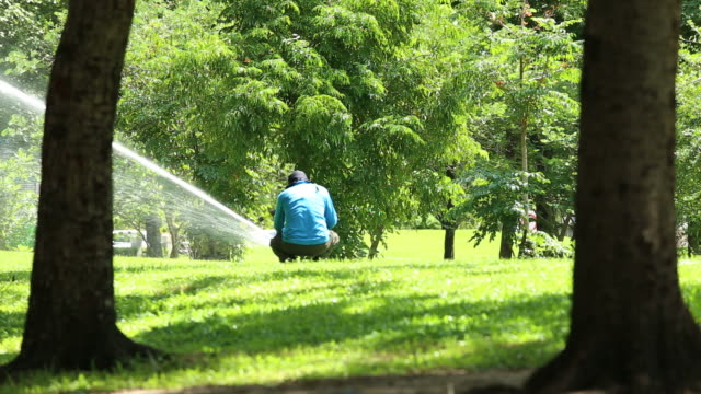 gardener preparing  automatic watering system