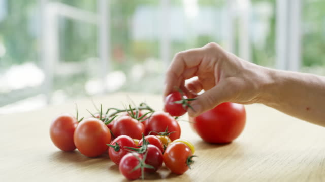 DS Gardener stacking cheery tomatoes on a table