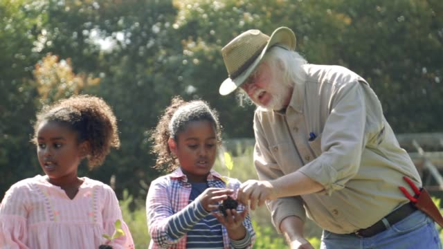 gardener teaching two sisters - gemeinschaftsgarten stock-videos und b-roll-filmmaterial