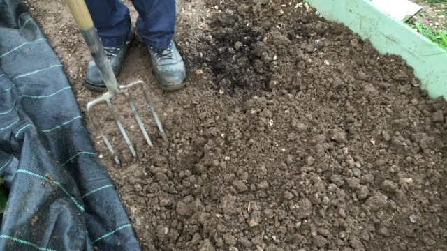 gardener tends to his allotment on october 19, 2020 in essex, england. the uk public have turned to using allotments during the coronavirus lockdown. - gardening stock videos & royalty-free footage