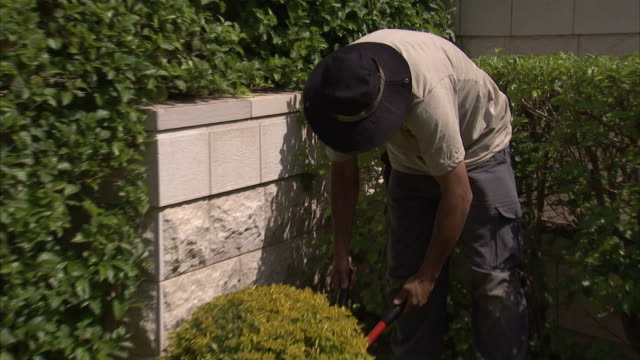 A gardener trims a topiary in the Hanging Gardens of Haifa in Israel. Available in HD