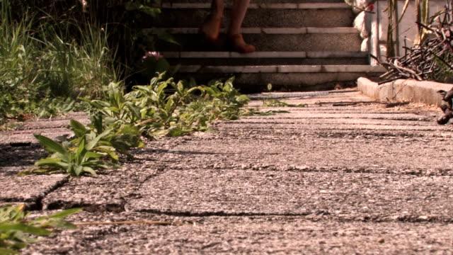 vídeos y material grabado en eventos de stock de caminata de jardinero - formal garden
