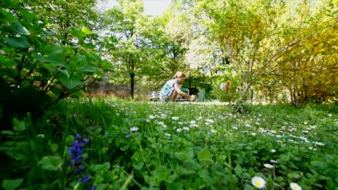 gardener woman among her flowers and plants - blomrabatt bildbanksvideor och videomaterial från bakom kulisserna