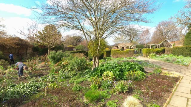 gardener works in the walled garden at brockwell park as spring comes to london on march 23, 2021 in london, england. - springtime stock videos & royalty-free footage