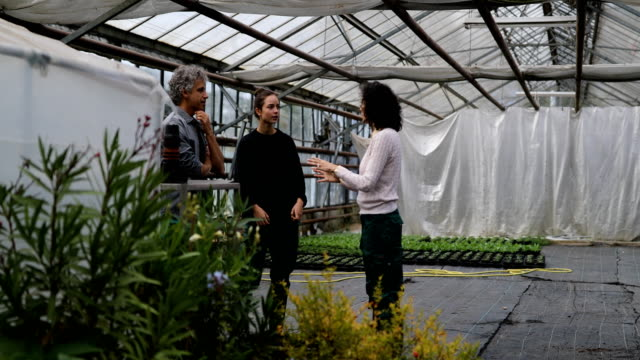 gardeners having a discussion in garden center - human relationship stock videos & royalty-free footage