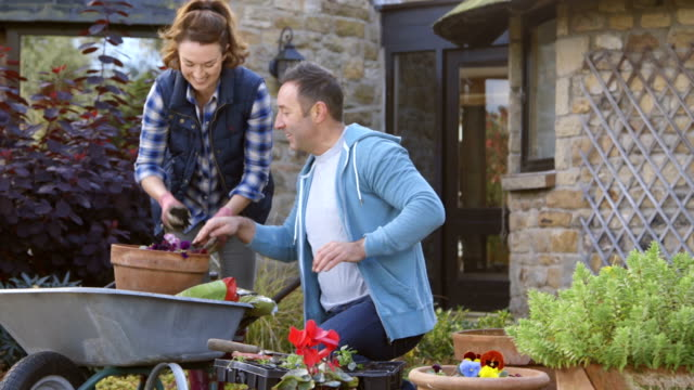 gardening couple - potting stock videos and b-roll footage