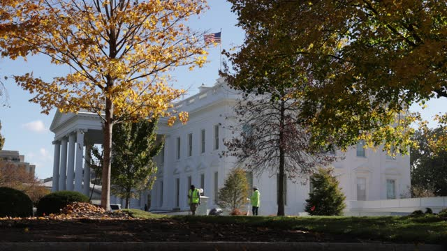gardening crew works on replacing the lawn on the ground of the white house november 10, 2020 in washington, dc. - real time footage stock videos & royalty-free footage