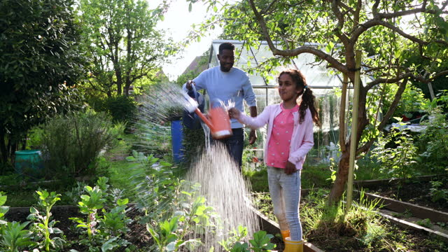 gardening is fun! - gardening stock videos & royalty-free footage