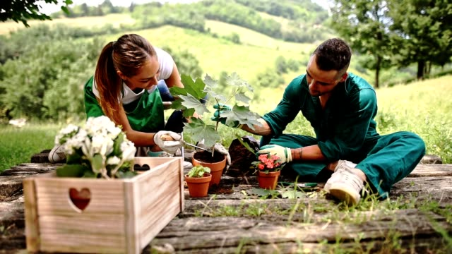 gardening together - potting stock videos and b-roll footage