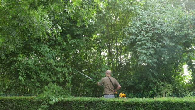 gardening tool operator pruning branches. - pruning stock videos & royalty-free footage