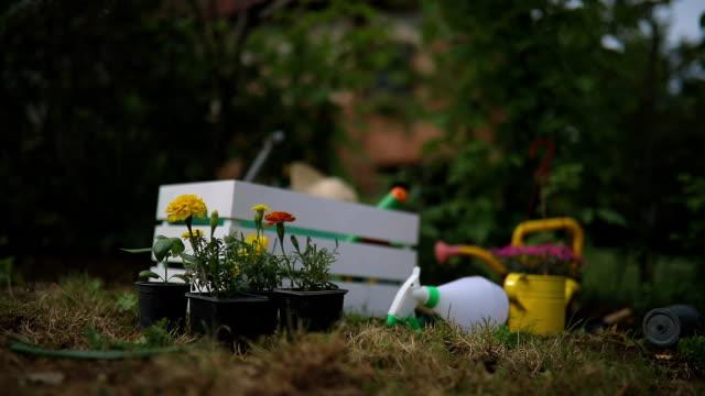 vídeos de stock e filmes b-roll de gardening tools and flowers in the garden - colocar planta em vaso