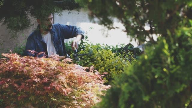 gardening - only mature men stock videos & royalty-free footage