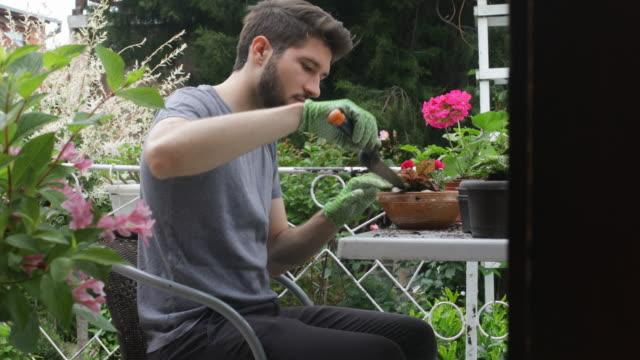 gardening - patio video stock e b–roll