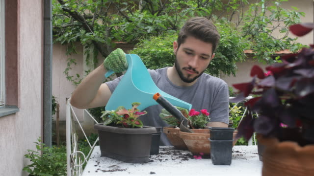 vídeos y material grabado en eventos de stock de jardinería - oficio agrícola