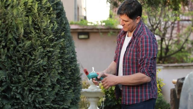 gardening - pruning stock videos & royalty-free footage