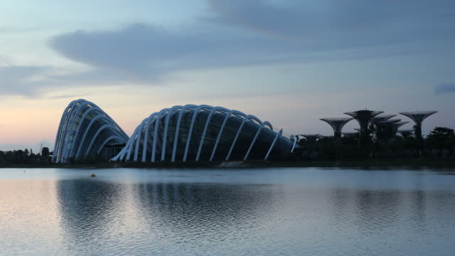 gardens by the bay at dawn, singapore, southeast asia, asia - establishing shot stock-videos und b-roll-filmmaterial