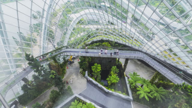 T/L Gardens By The Bay - Cloud Forest Walkway