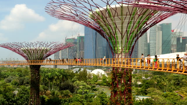gardens by the bay - formal garden stock-videos und b-roll-filmmaterial