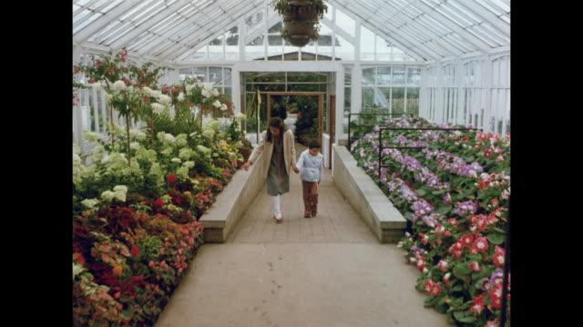 1981 gardens of aberdeen, scotland - aberdeen scotland stock videos & royalty-free footage