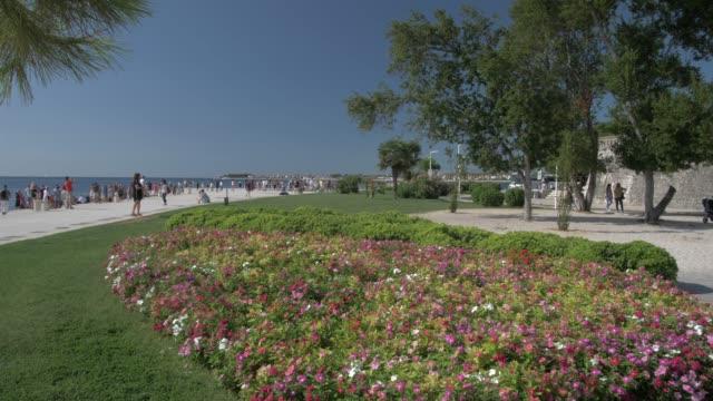 gardens, promenade and adriatic sea, zadar, zadar county, dalmatia region, croatia, europe - adriatic sea stock videos & royalty-free footage