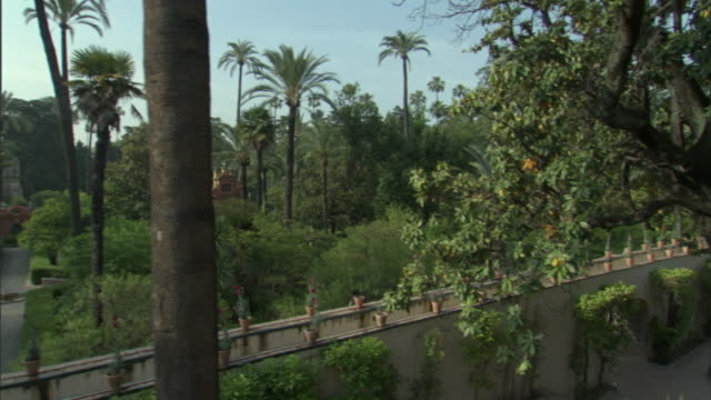 stockvideo's en b-roll-footage met cs, ms, td, gardens separated by wall, seville, andalusia, spain - tuinpad