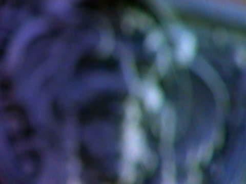 vídeos y material grabado en eventos de stock de gargoyle - elemento de diseño