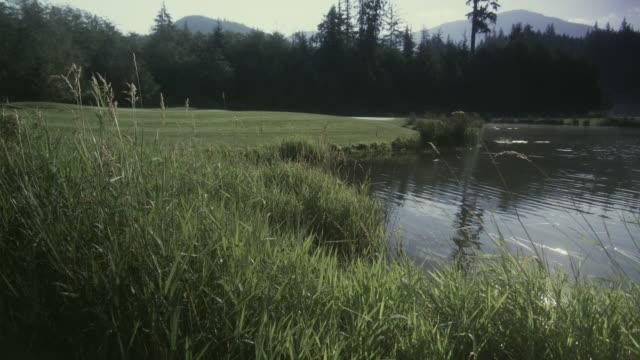 ws garibaldi springs golf course with pond / squamish, british columbia, canada. - squamish stock videos & royalty-free footage
