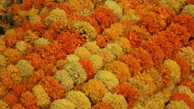 garland of flowers on sale at the ganges, india - hinduism stock videos & royalty-free footage
