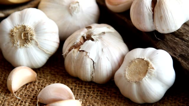 garlic at organic kitchen farm - garlic stock videos & royalty-free footage