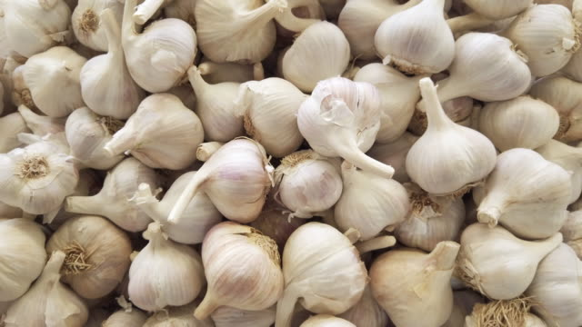 garlic bulbs for sale on farmer's market - garlic stock videos & royalty-free footage