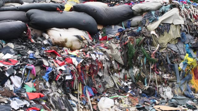 garment factory waste at a dumping site in dhaka - landfill stock videos & royalty-free footage