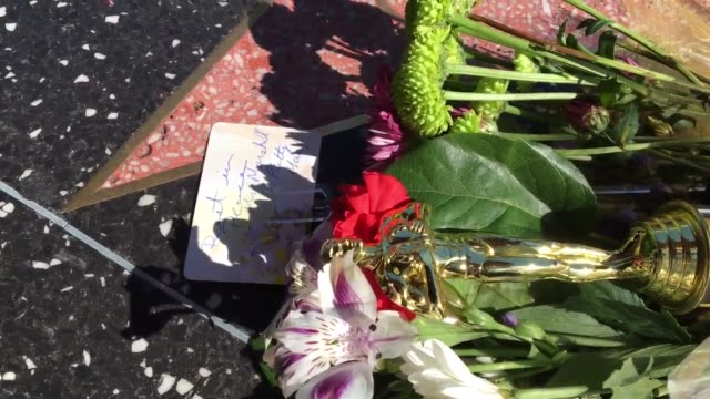stockvideo's en b-roll-footage met garry marshall's station the hollywood walk of fame sits quietly with a single bouquet outside of the el capitan theater on hollywod blvd very few... - el capitan theater
