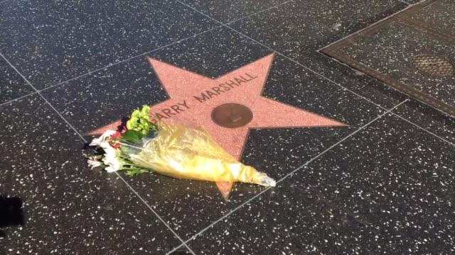 garry marshall's station the hollywood walk of fame sits quietly with a single bouquet outside of the el capitan theater on hollywod blvd. very few... - エルキャピタン劇場点の映像素材/bロール