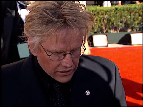 gary busey at the 2002 screen actors guild sag awards at the shrine auditorium in los angeles, california on march 10, 2002. - ゲーリー ビジー点の映像素材/bロール