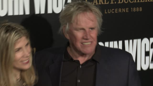 """gary busey at the """"john wick: chapter 2"""" us premiere at arclight hollywood on january 30, 2017 in hollywood, california. - ゲーリー ビジー点の映像素材/bロール"""
