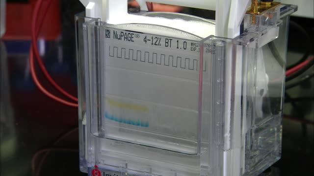 gas chromatography-mass spectrometry (gcms), university of washington, seattle, usa - university of washington video stock e b–roll