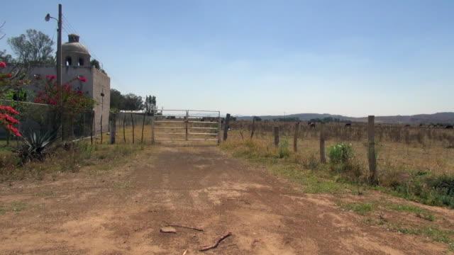 vídeos de stock e filmes b-roll de gated small church with farm in tequila mexico - cerca