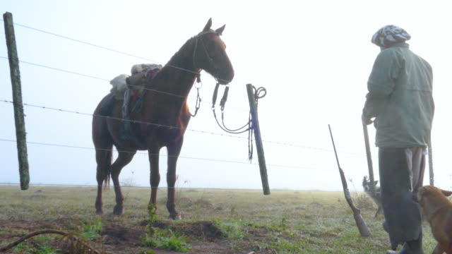 vídeos y material grabado en eventos de stock de gaucho argentino en santefa argentina con niebla de la mañana y su caballo tomar una escopeta - oficio agrícola