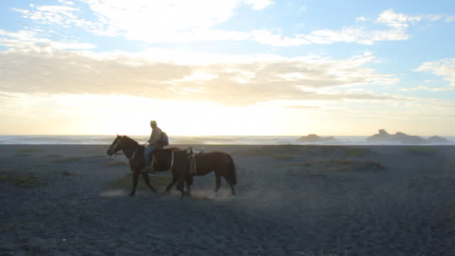 Gaucho riding a horse on the misty coast of Chile at dusk.