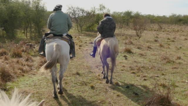 vídeos de stock e filmes b-roll de 2 gauchos argentinos riding a horse in the fields of santa fe - gaúcho