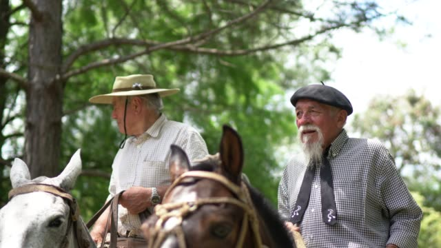 vídeos de stock e filmes b-roll de gauchos riding horses - gaúcho