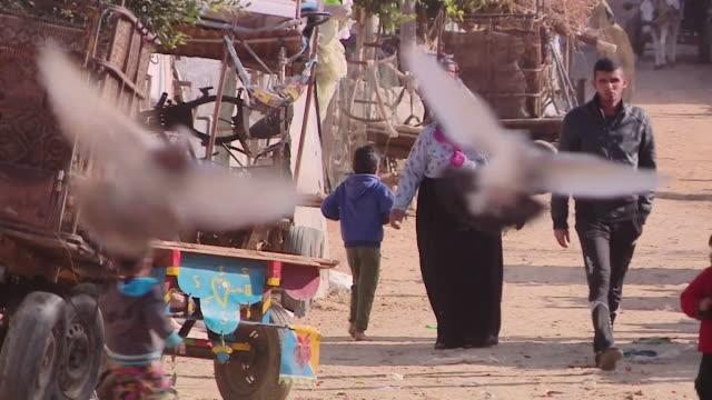 gaza street scenes showing poverty - gaza strip stock videos & royalty-free footage