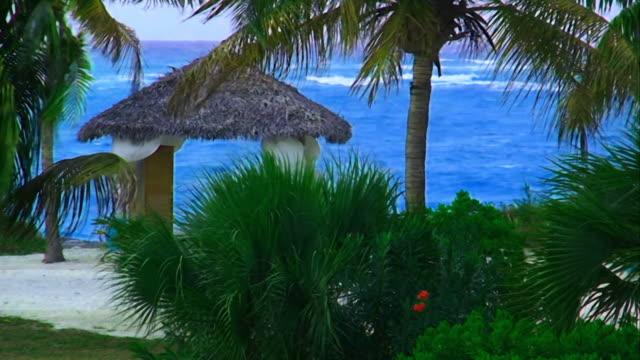gazebo among a tropical garden in front of the sea - gazebo stock videos & royalty-free footage