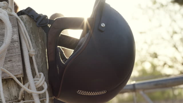 gear up and giddyup - bridle stock videos & royalty-free footage