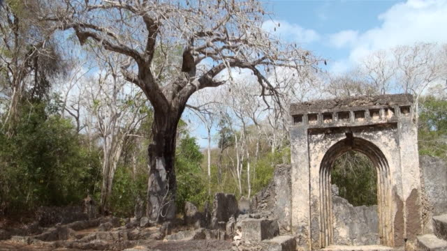 ms pan gedi ruins near watamu audio / gedi, coast province, kenya   - old ruin stock videos and b-roll footage