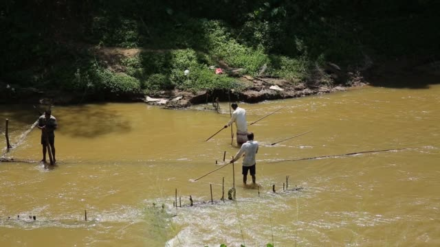 Gem miners use long wooden poles to cut up the riverbed in the Vhay river in Ratnapura District Sabaragamuwa Province Sri Lanka on Wednesday Feb 7...
