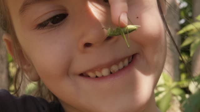 学習プロセスです。ニュートラルな子供の性別と遊ぶ昆虫ます。 - 虫刺され点の映像素材/bロール