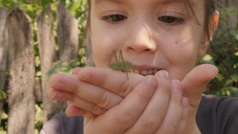 learning process. gender neutral child playing with insects. - insect stock videos & royalty-free footage
