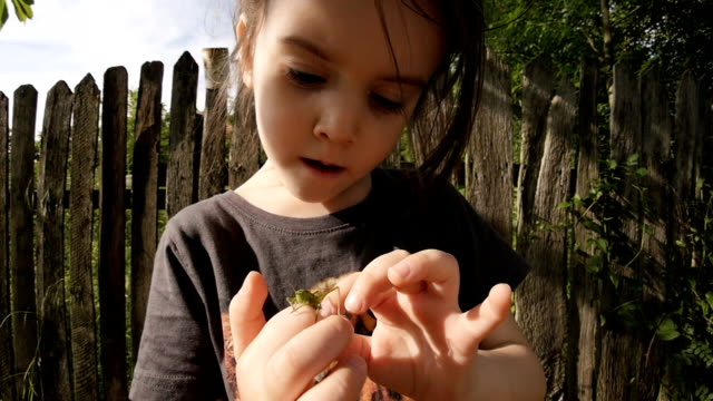 LEARNING PROCESS. Gender Neutral Child Playing With Insects.